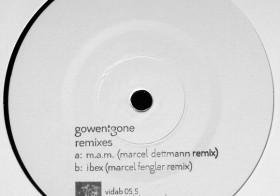 GOWENTGONE – M.A.M. (MARCEL DETTMANN REMIX) – VIDAB 05.5